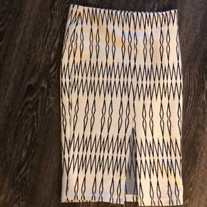 Zara Knee-Length Skirt